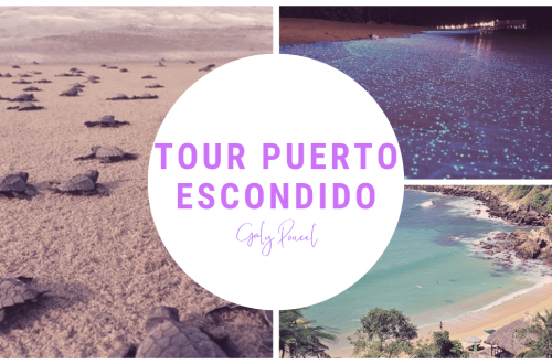 tour puerto escondido